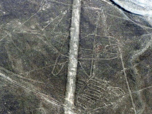 Nazca Lines - Whale