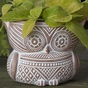 Fair Trade Planters - Succulent Garden planter_owl