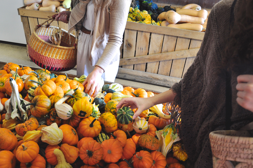 Thanksgiving Decorating, Fall decorating - harvest home - farmers market shopping - produce, gourds - cornucopia