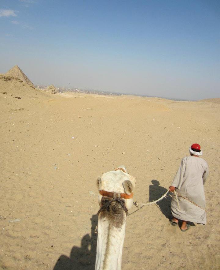 TenThousandVillages_Egypt_2