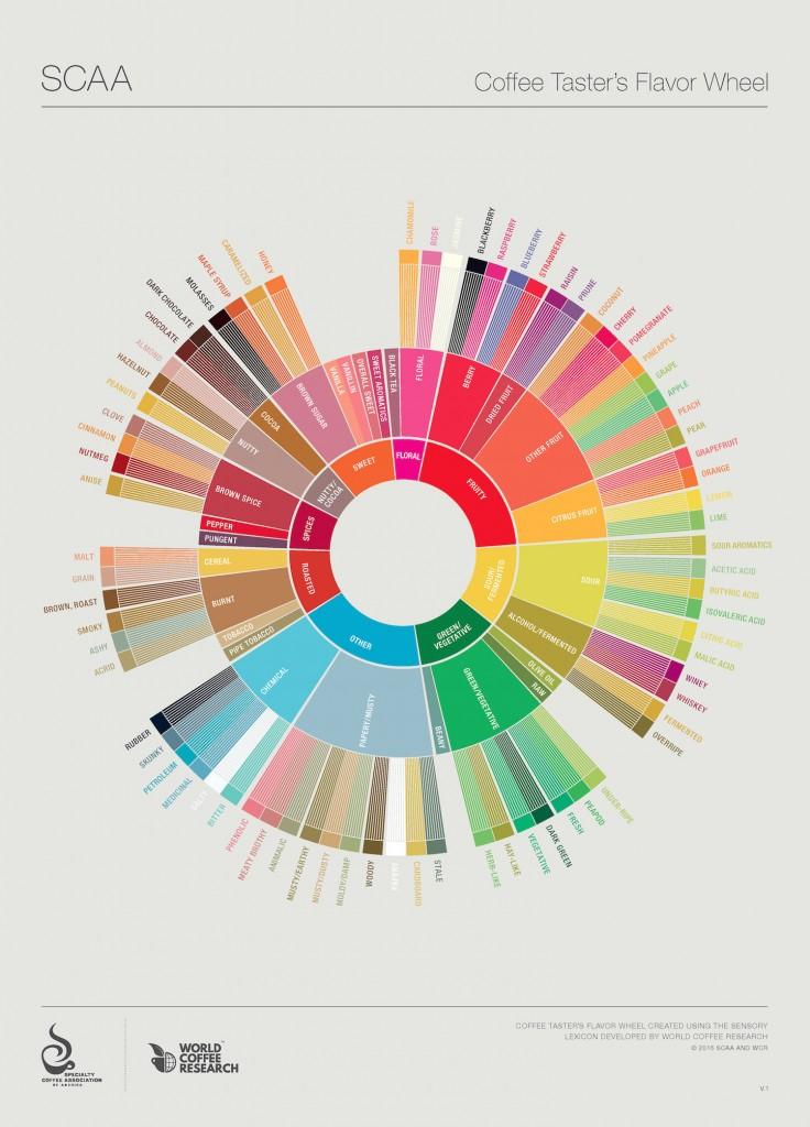 SCAA Coffee Taster's Flavor Wheel #LiveLifeFair