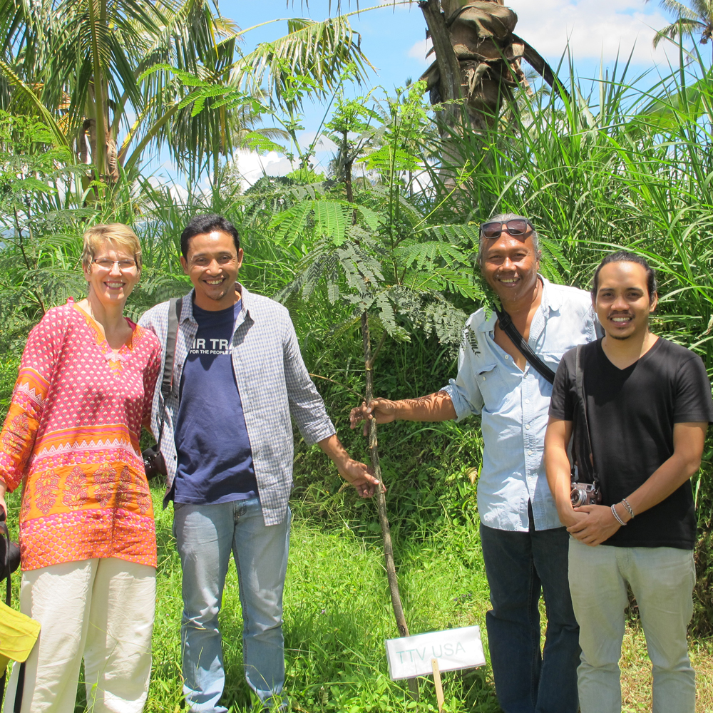The must-have guide to Arbor Day! Mitra Bali
