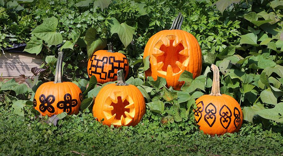 Adinkra Pumpkin Carving Ideas
